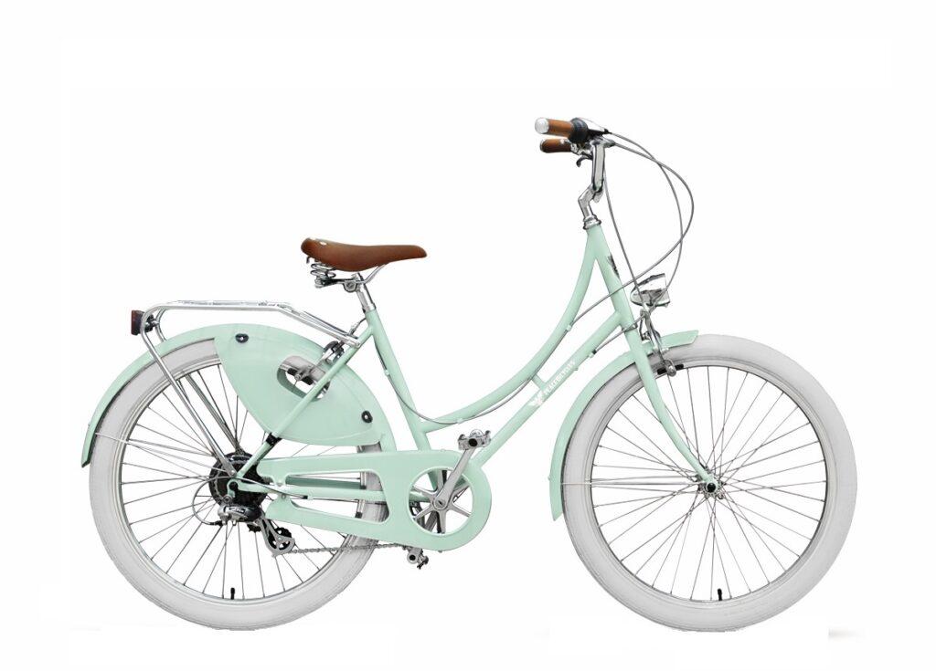 Lightweight commuter bike with coat guard