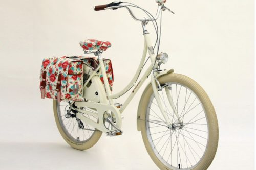 ladies bike with bags