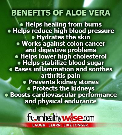 aloe vera live a healthy lifestyle