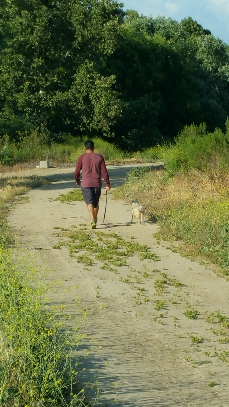 man walking dog down trail