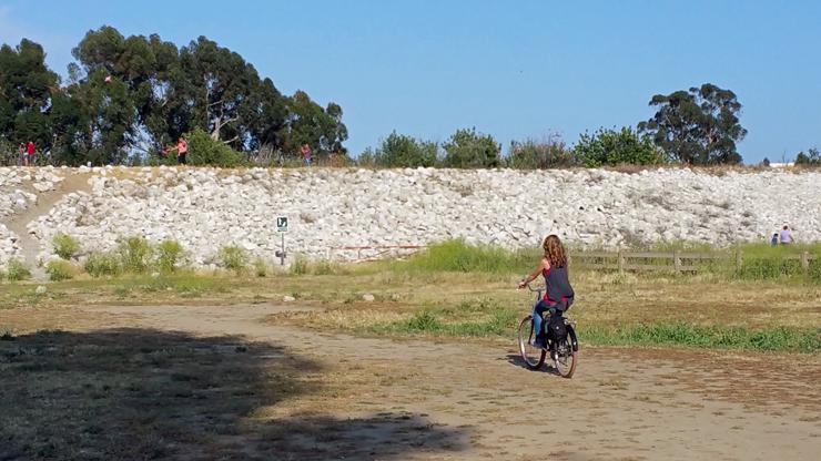 biking on a nice sunny day