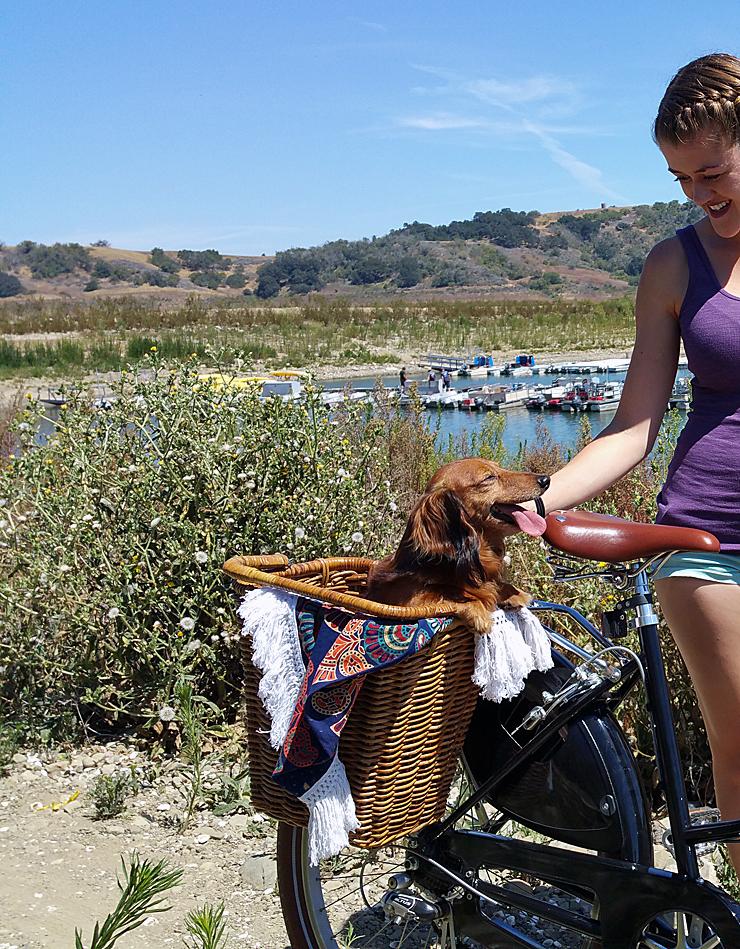 Biking around Lake Casitas in Ojai - Peace Bicycles