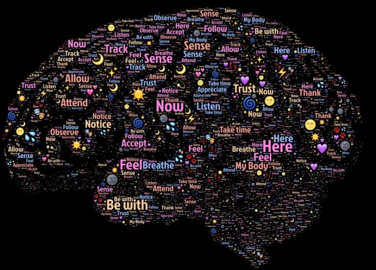 the brain benefits from bicycling