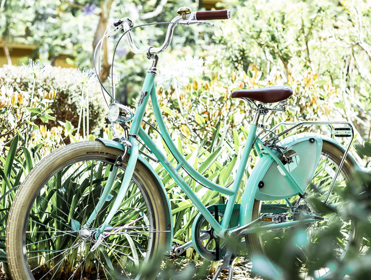 seafoam ladies bike