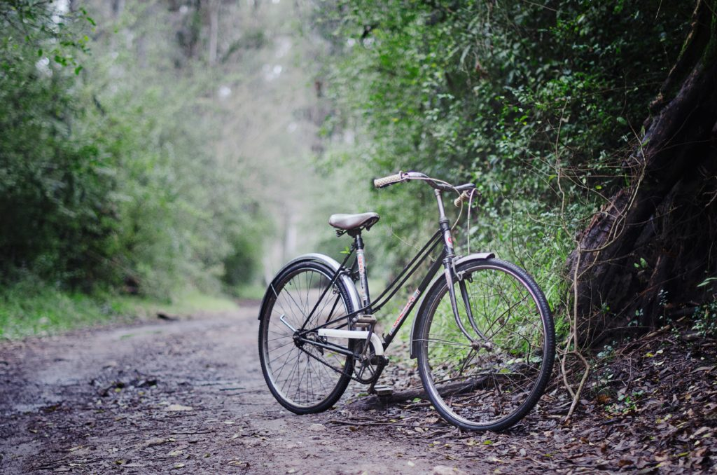 classic bicycle in forest