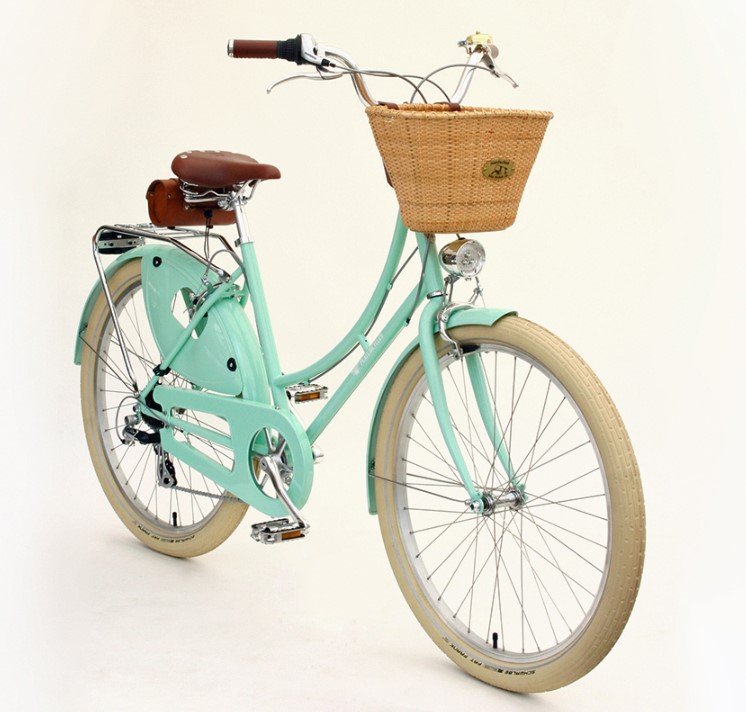 best bike for city riding dreamer with basket