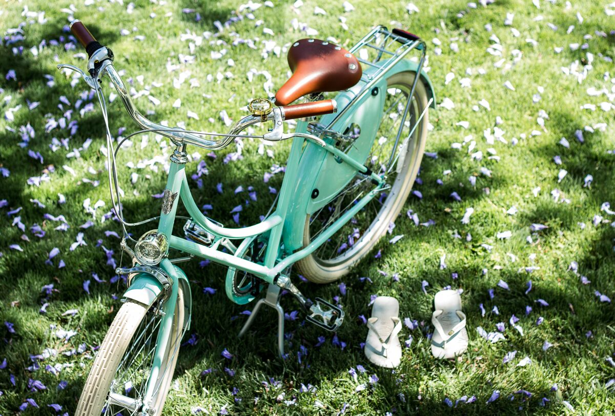 Seafoam-Dutch-City-Cruiser-Grass